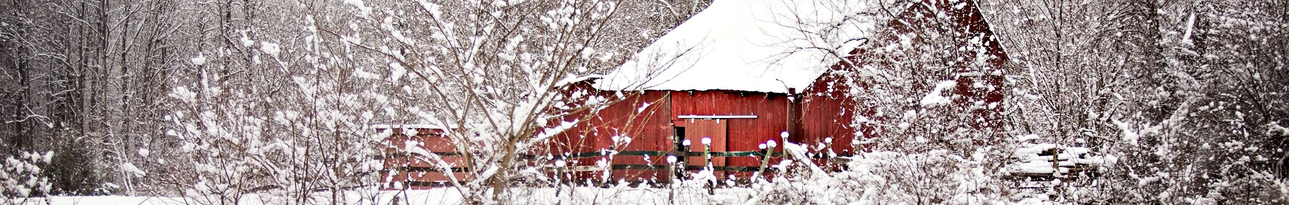 Plum Point Road Barn in Winter