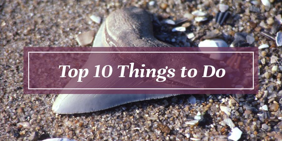 Top 10 Things to Do Button