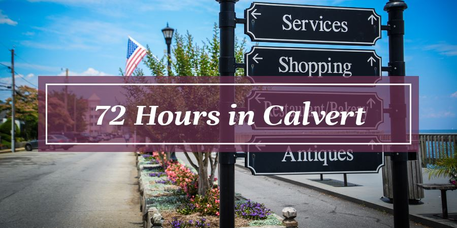 72 Hours in Calvert County Button