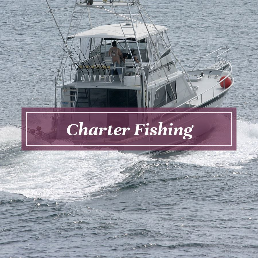 Charter Fishing Hover FINAL