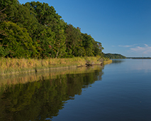 Patuxent River at Kings Landing